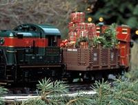 Holiday Railway
