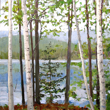 "caption:Birches, Cooper Lake 1, 20"" x 20"", oil painting by Elissa Gore, CW'73, GSFA'74."